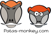 Logo des PatasMonkey.com